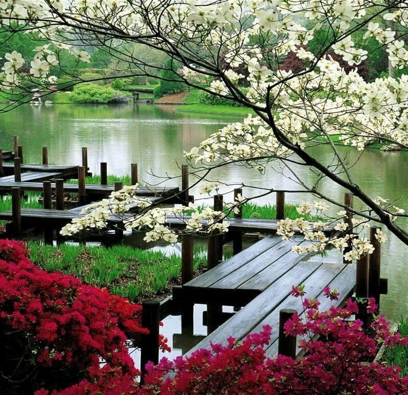 Gyönyörű-a-tavasz