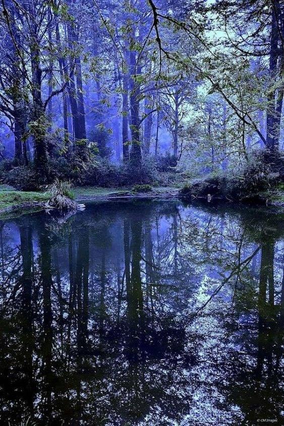 poezie in albastru de aurelia oanca