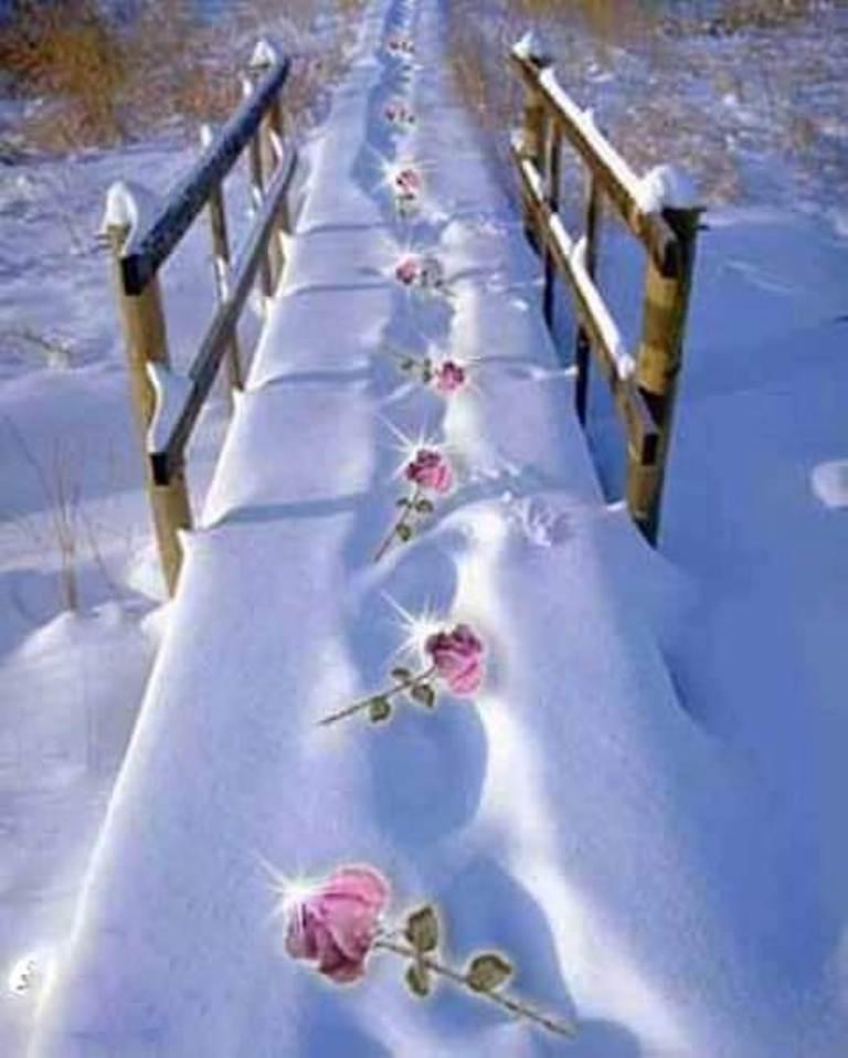 coboara iarna de teo dumitru