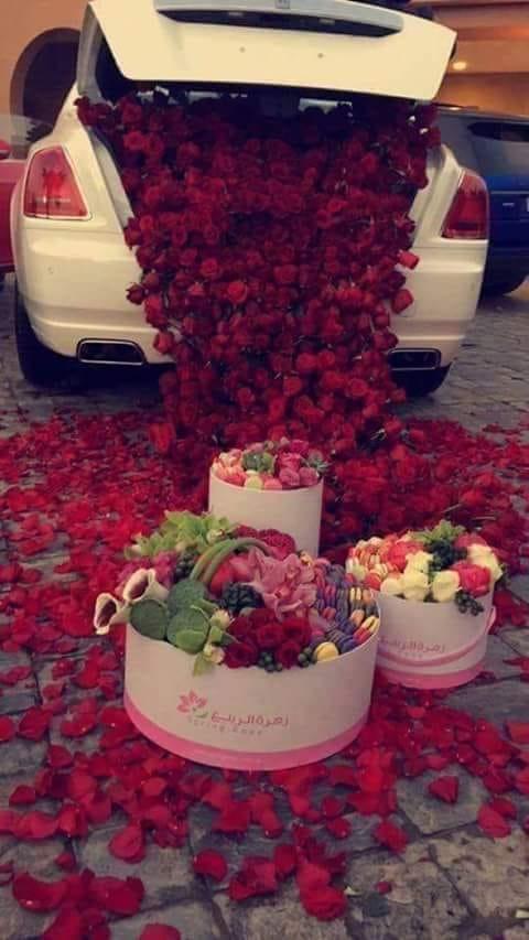 dragoste cu spini trandafitii de mihaela c d
