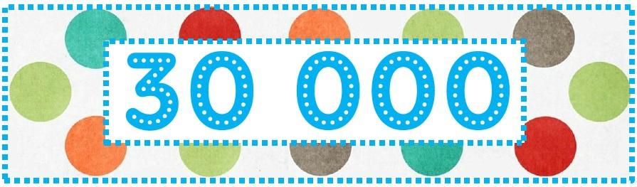 30000 visitors