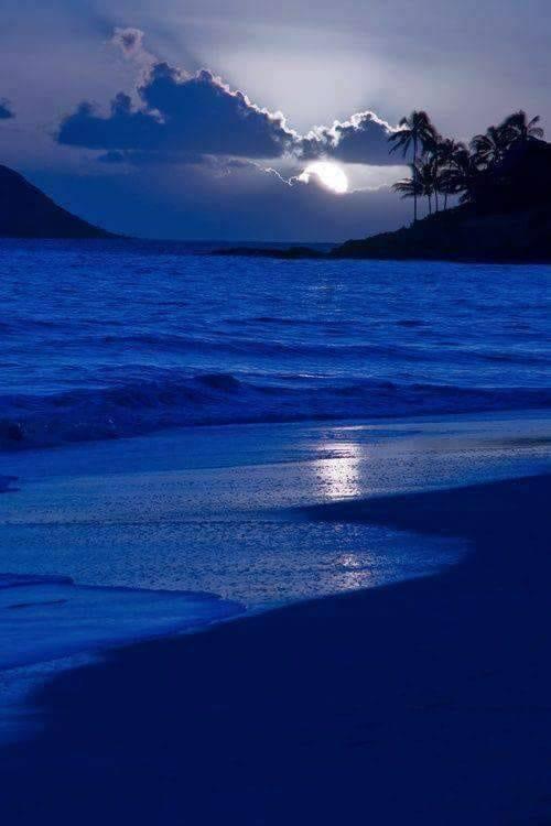 albastru regal de aurelia oanca