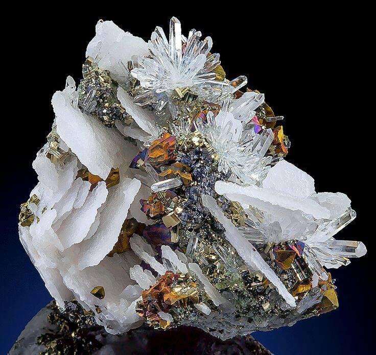floare de lumina de autor aurelia oanca