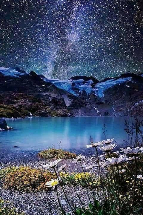 galaxia fericirea de aurelia oanca