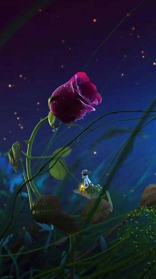 licuriciul indragostit de aurelia oanca