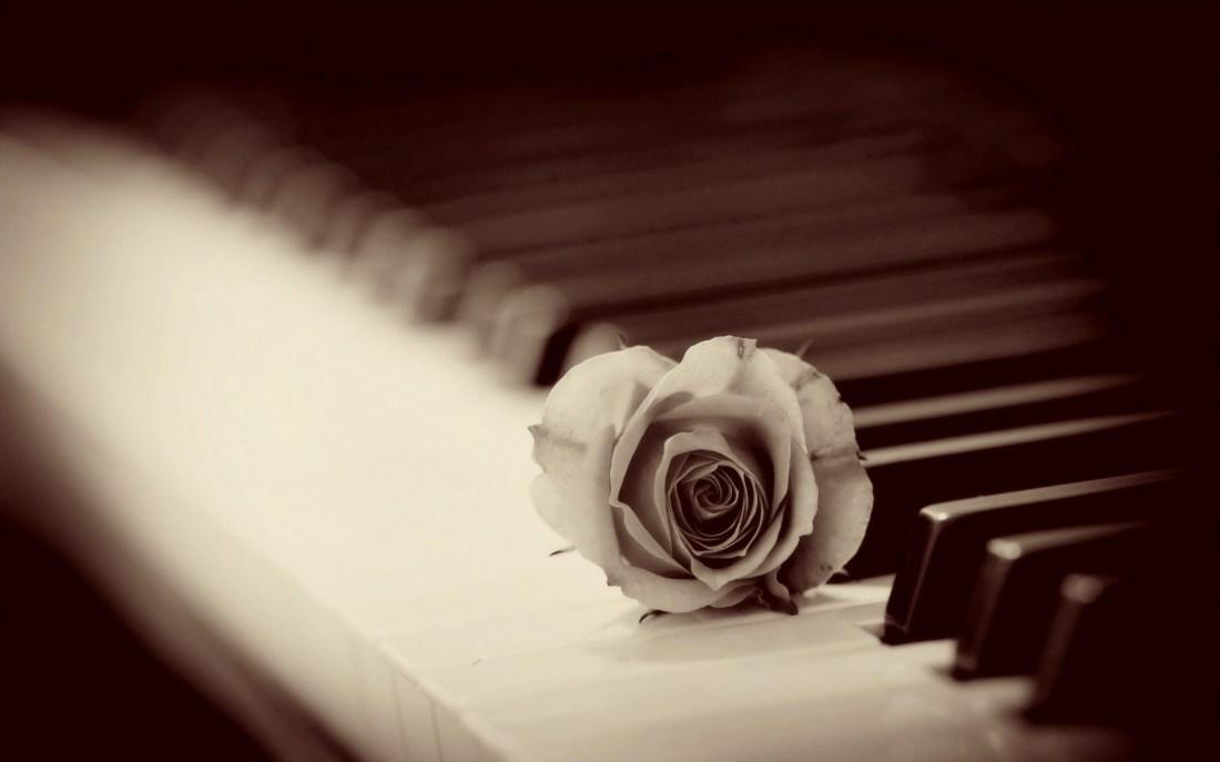 petale de trandafir de constantin bidulescu