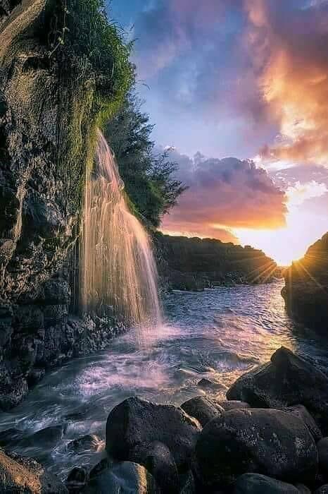 apa de aurelia oanca