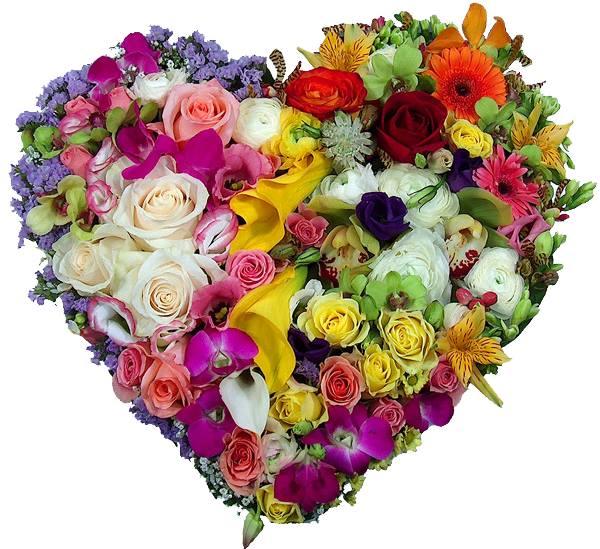 Florile din inima mea de Mihaela CD