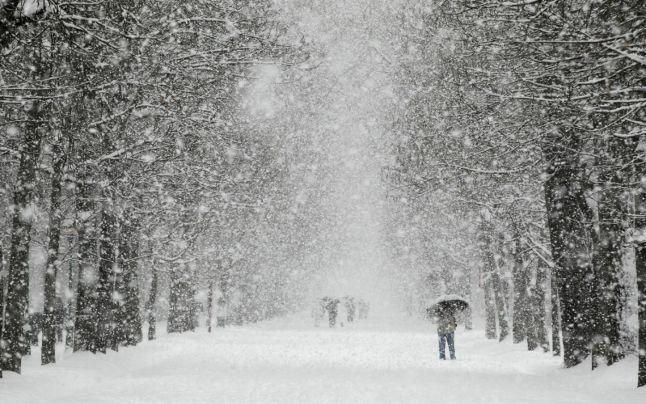 Ninge-ncet iubirea mea de elena tudosa