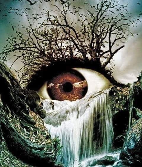 o lacrima de elena tudosa