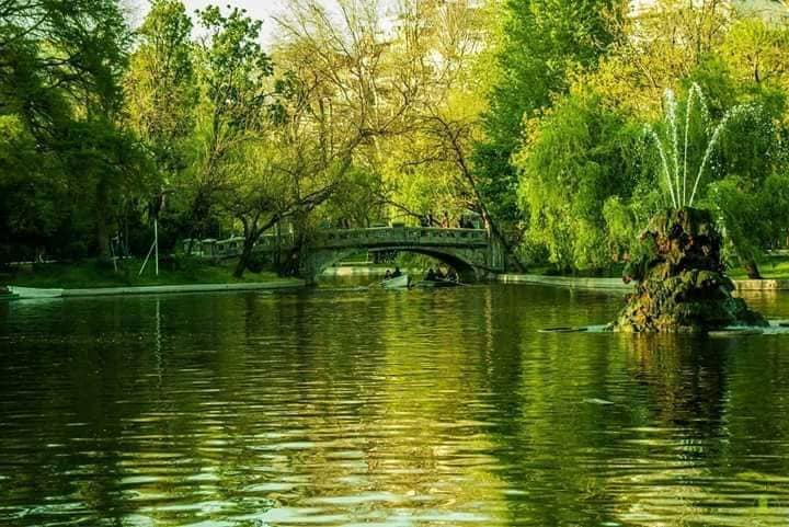 podul amintirilor de aurelia oanca