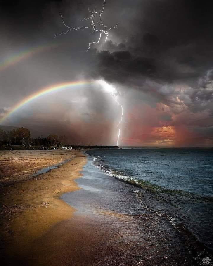 furtuna de aurelia oanca