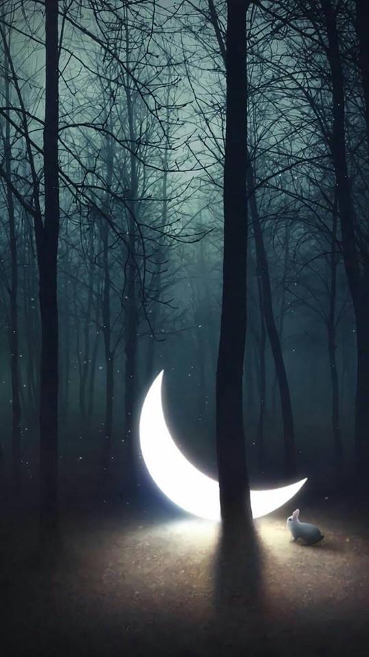 luna-ndragostita de aurelia oanca.jpg