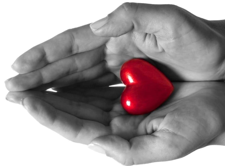 Ti-am pus inima in palma de Mihaela CD