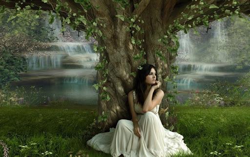 Popas sub copacul iubirii de Mihaela CD