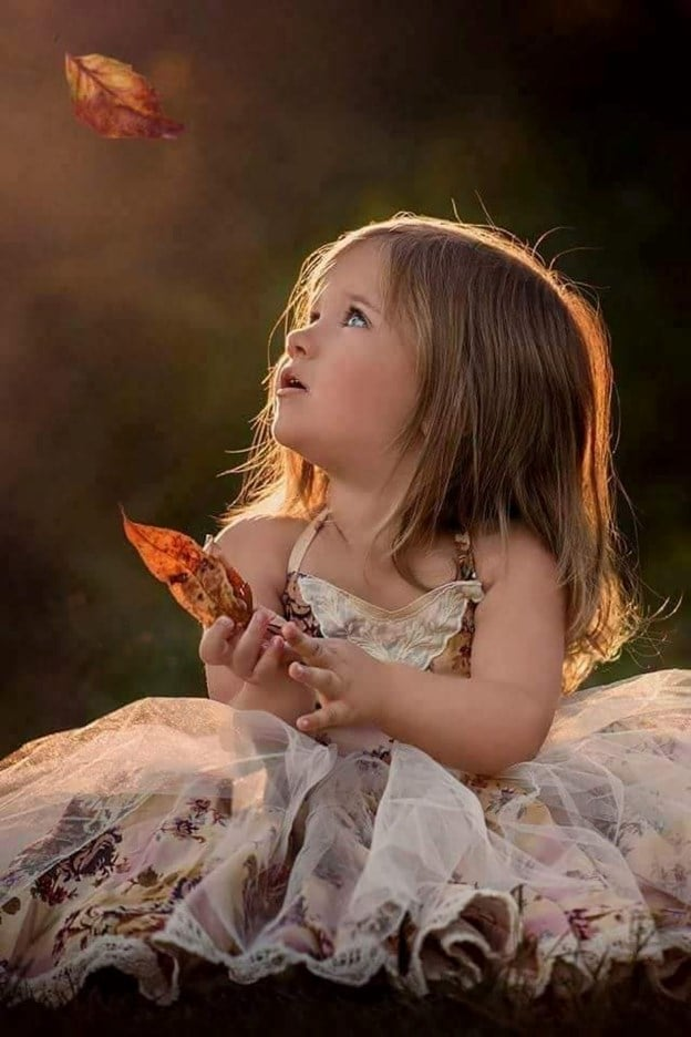 in lume copacei de aurelia oanca.jpg