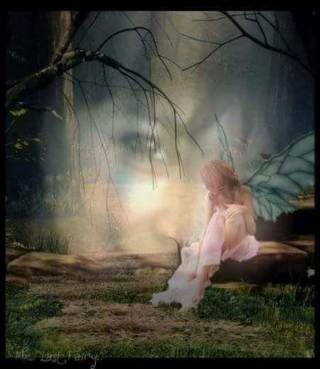 sufletul se ascunde de aurelia oanca