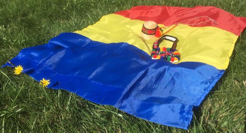 Acelasi tricolor