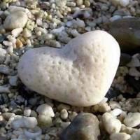 Intrebarea inimii