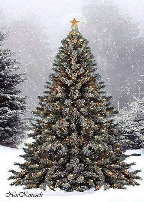 ninge-ma Doamne de Teodora Dumitru.jpg