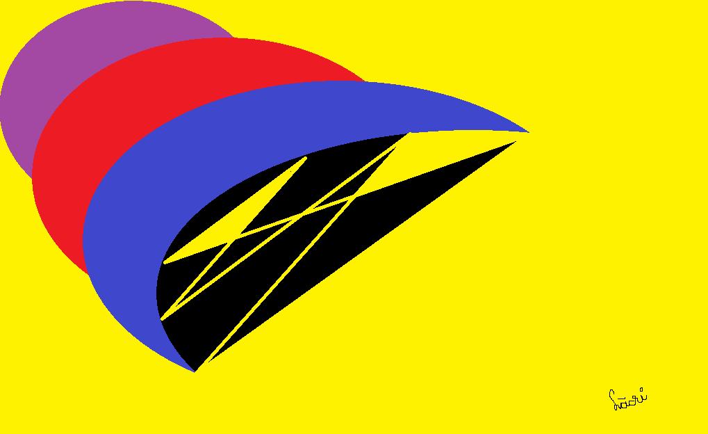 07 rapacitate