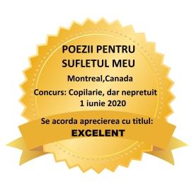 CONCURS COPILARIE-EXCELENT