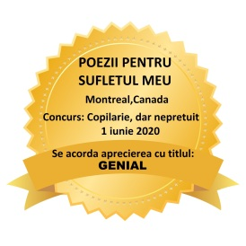 CONCURS COPILARIE-GENIAL