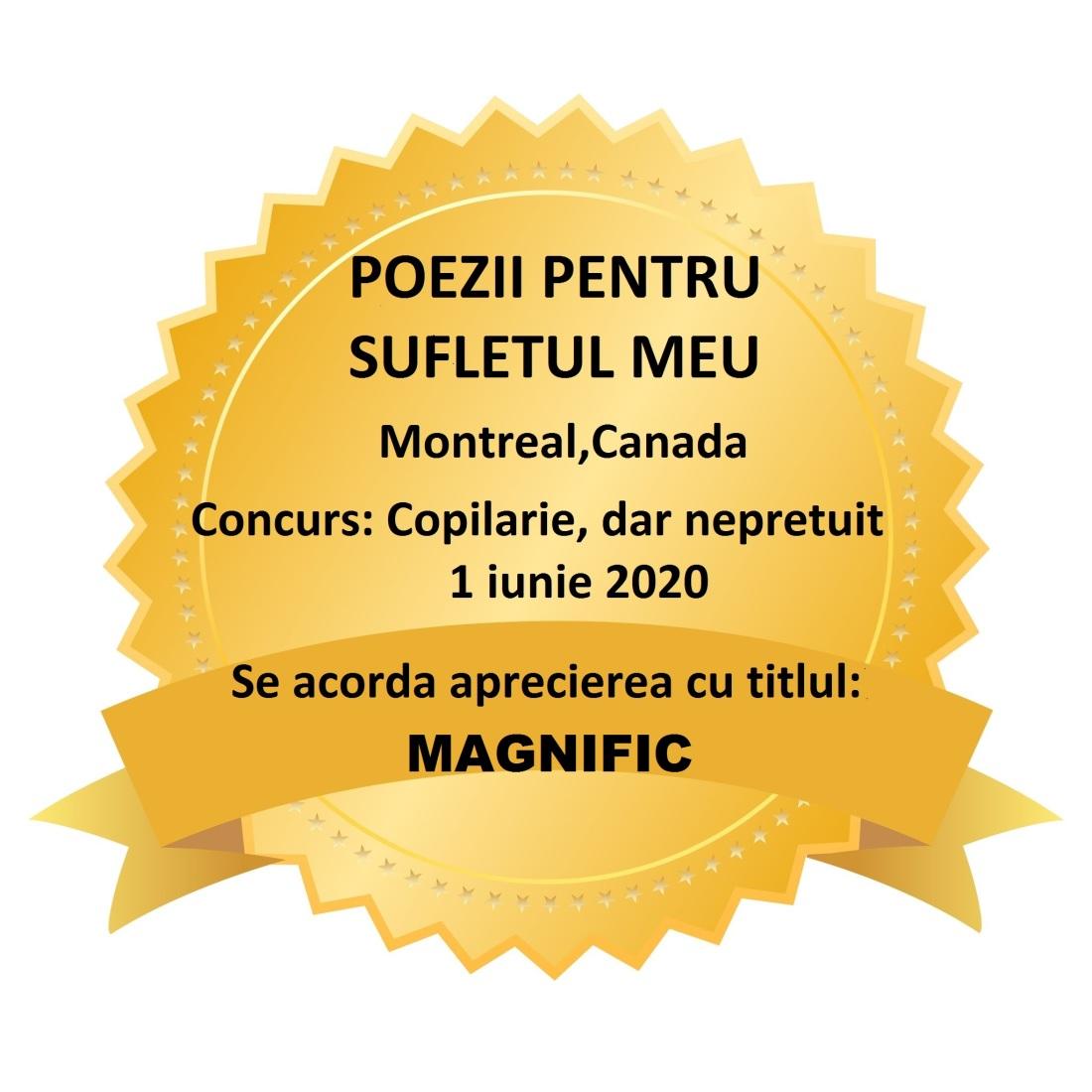 CONCURS COPILARIE-MAGNIFIC