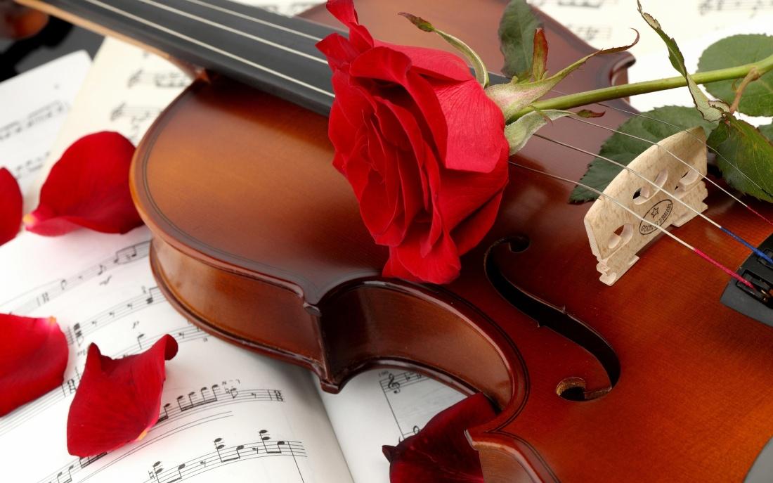 Din rosii trandafiri de Mihaela CD