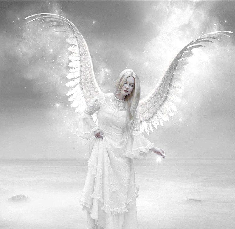 O clipa de argint de Mihaela CD
