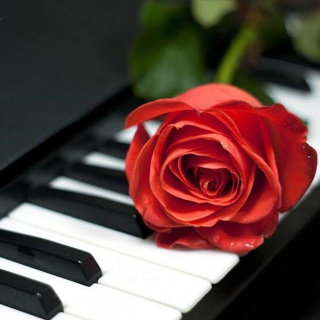 Diy-Diamond-Embroidery-Flower-Painting-5D-Rose-Piano-Diamond-Painting-Cross-Stitch-Needlework-Full-Diamond-Home.jpg_640x640