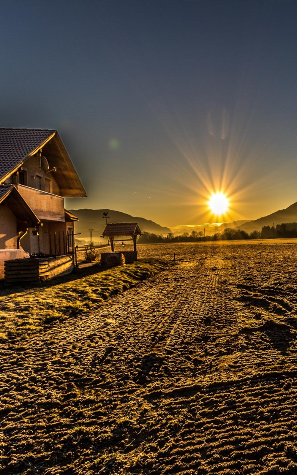 Frosty-Country-Morning-Sun-Rise-Mobile-Wallpaper