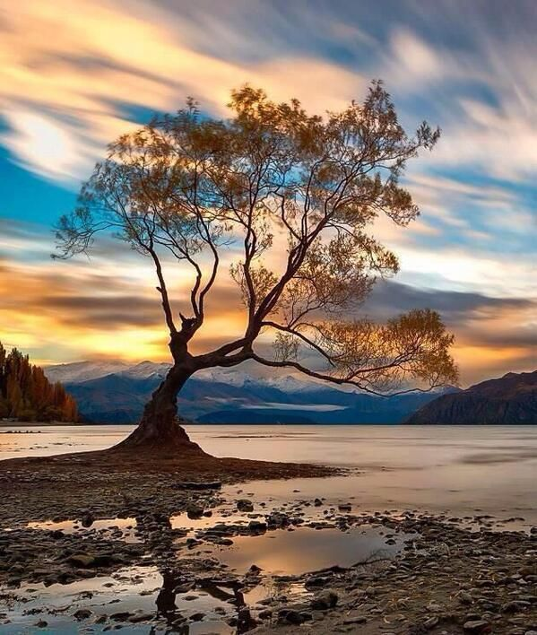 fc3a11606c064ccd9e2456f186cc1af3--wanaka-new-zealand-beautiful-pictures